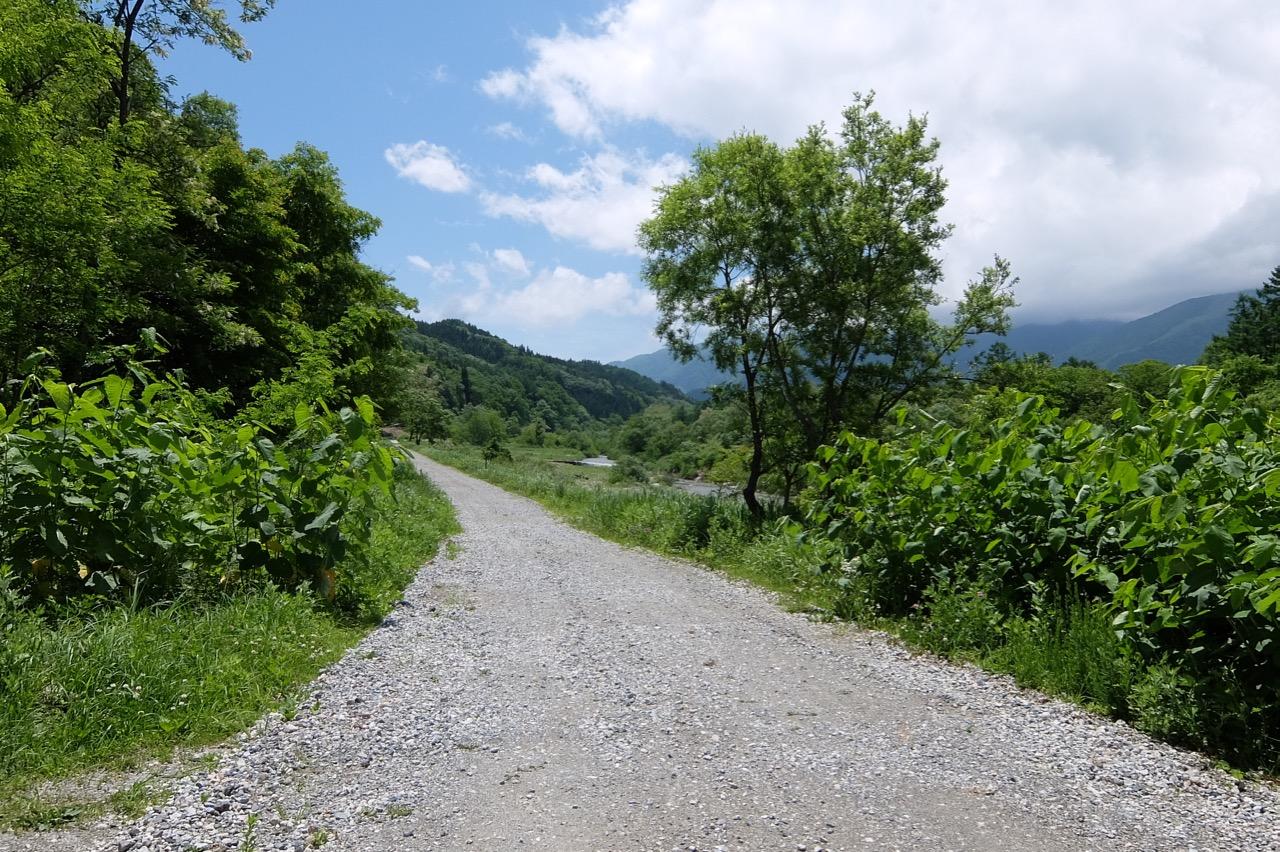 姫川右岸側のランニングコース山並み綺麗です。