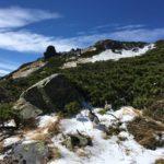 初冠雪、雪、見てきましたー