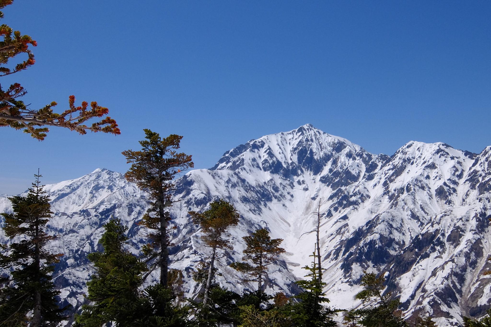 五竜snowシーズン締めは、